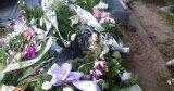 Pies leżał na jednym z grobów