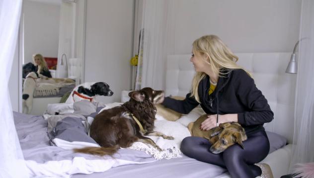 """""""Misja Pies"""": Kasia Moś i jej psia rodzina"""