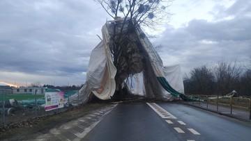 Wiatr zerwał namiot z boiska koło Legionowa. Płachta zawisła na drzewach
