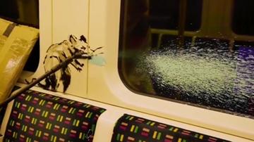 """Szczury w maseczkach. Banksy """"odkaził"""" londyńskie metro"""