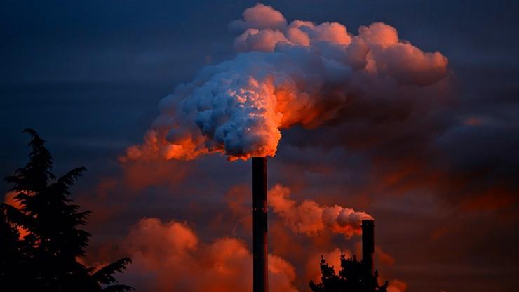 Holandia: sąd najwyższy nakazał władzom ograniczenie emisji dwutlenku węgla