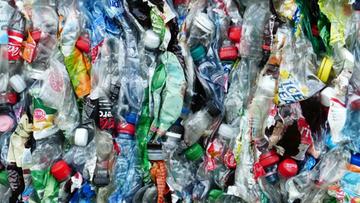 Plastik jest wszędzie. Nawet w deszczu