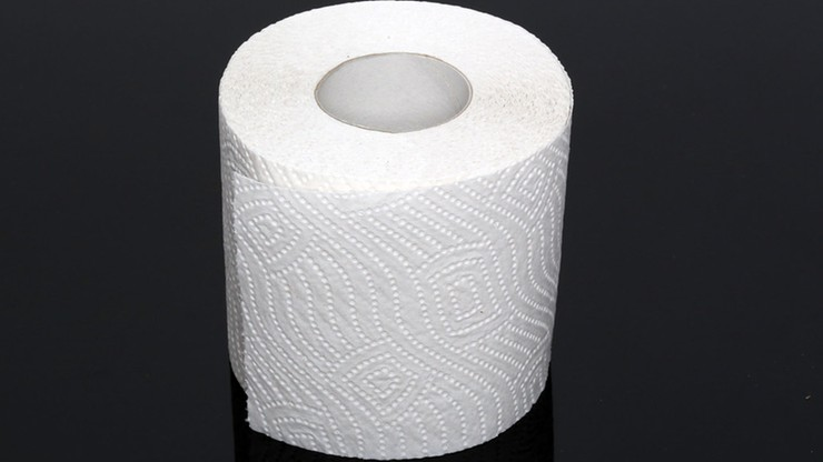 Sztuka z papierem toaletowym w roli głównej. Dzieło zostało sprzedane za 5050 euro