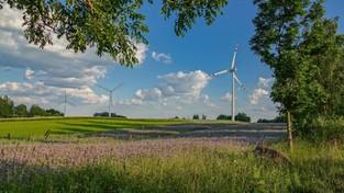 03.07.2020 00:00 Letnie klimaty na łonie natury
