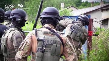 Siłowe wejście policji do nielegalnych fabryk papierosów