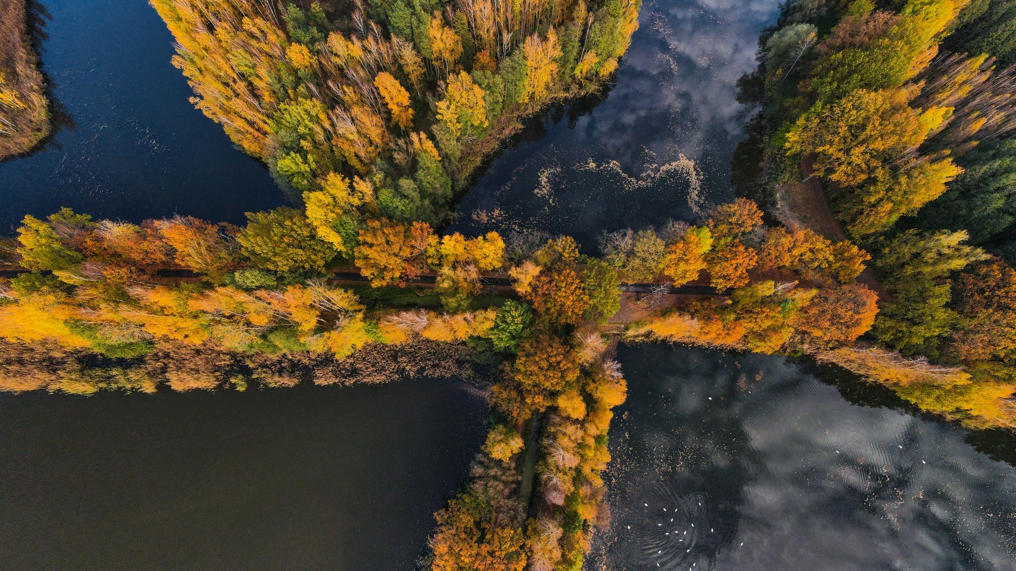 Jesień w Polsce z lotu ptaka - zdjęcie 2