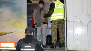 Wietnamczycy ukryci w tirze ze sklejką. Próbowali nielegalnie wjechać do Polski