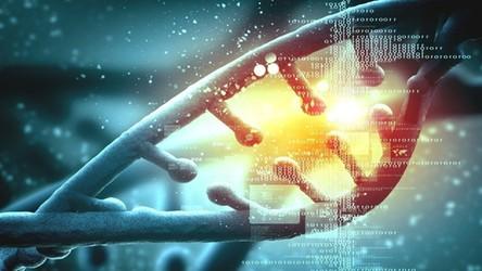 Szczepionką Pfizera i BioNTechu już za miesiąc będą mogły zaszczepić się VIPy