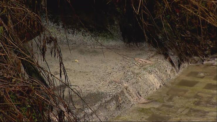 """W rzece Kamienica płynie """"szara maź"""". """"Skarb natury zabijany przez wpuszczanie ścieków"""""""