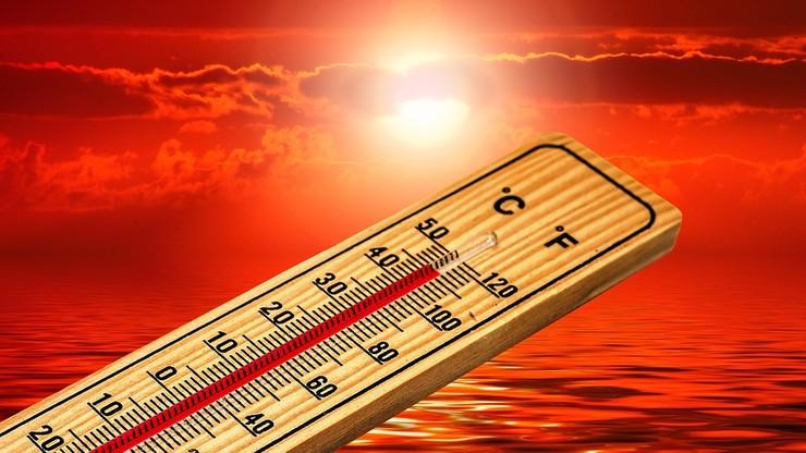 Niemal rekord ciepła w Polsce. W piątek najgoręcej było w Słubicach