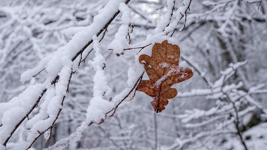 Fot. TwojaPogoda.pl