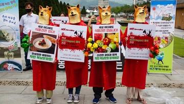 """Urządzili udawany """"psi pogrzeb"""". W przebraniach protestują przeciwko jedzeniu mięsa [FOTOGALERIA]"""