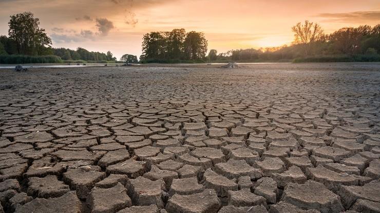 Grozi nam susza. IMGW: jedna z najgorszych sytuacji w historii pomiarów - od ponad 100 lat