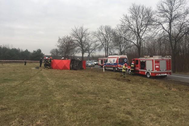 44-latka wsiadła do bmw i nie zapięła pasa. Zginęła po uderzeniu w drzewo [ZDJĘCIA]