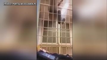 Półnaga tańczyła na kratach aresztu. Nagrali ją włocławscy policjanci