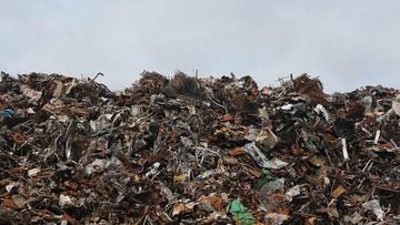 """Poseł alarmuje o tysiącach ton sprowadzanych śmieci. Ministerstwo twierdzi, że to """"surowce wtórne"""""""