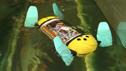 Pierwszy robotyczny żółw morski będzie nadzorował hodowle ryb (film)