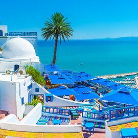 Tunezja kontynentalna